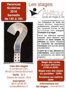 Stage de Sculpture sur Ballons (95) @ Akiltour