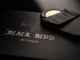 Blackbird de Jeff COPELAND