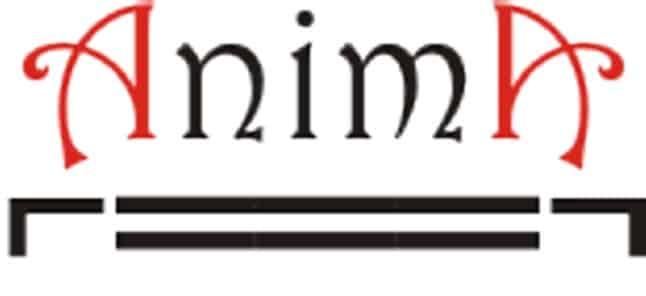 Association magie Anima Nantes