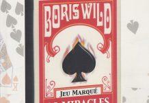 Le Livre du Jeu Marqué de Boris WILD