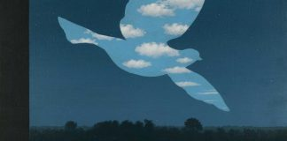 Colombe de René Magritte