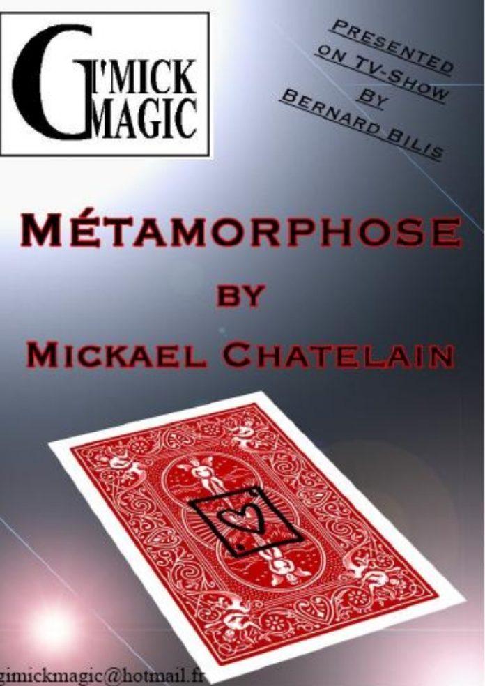 Métamorphose de Mickael CHATELAIN