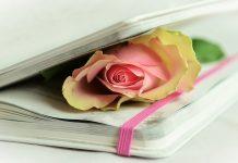 Memory for Rose de Emmanuel PRIELS