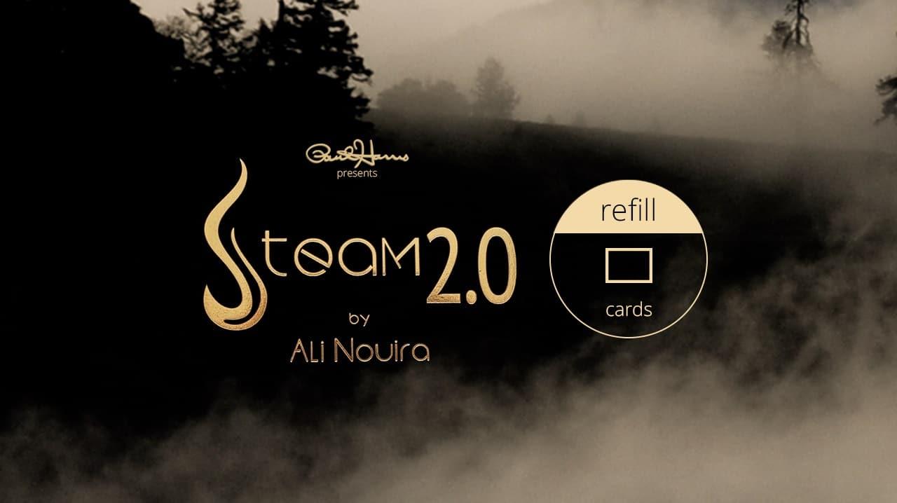 Steam 2.0 de Ali NOUIRA – offre spéciale VMistes