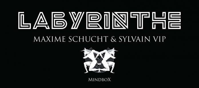 Labyrinthe de Sylvain VIP et Maxime SCHUCHT